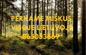 Perkame miškus visoje Lietuvoje su žeme ir išsikirtimui